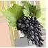 виноград активный ингредиент framesi